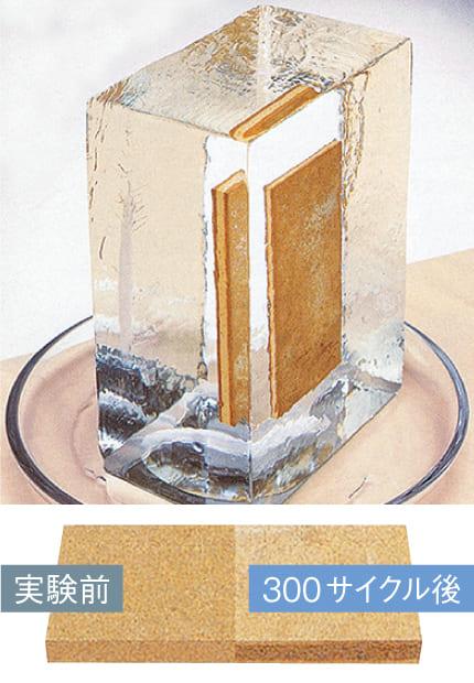 凍結融解試験の参考写真を紹介
