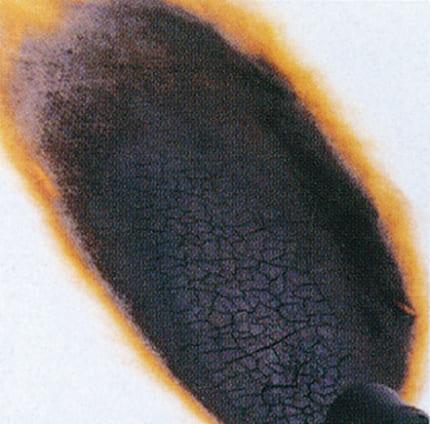 ネオマファーム燃焼実験の参考写真を紹介